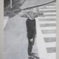 _ tête tortue _ (collage d'images volées) oil on cardboard / huile sur carton 87,5 cm x 66,7 cm (2017)